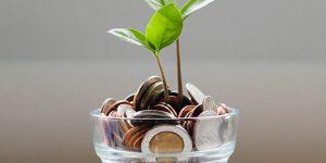financial-wellness-PDF-Image